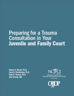 NCJFCJ Trauma Manual Cover